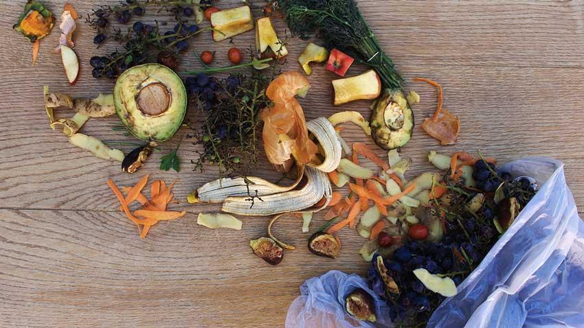 food spoilage waste